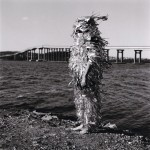 from the series Bridge Witch